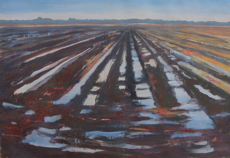 Arienne Molenaar - Schilderijen - L1 - Walchers landschap na de regen